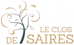 Logo-LCDS